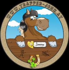 Gemeinschaftsprojekt Kinesiologie und Reitstall Equus Domus